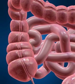 5 Conditions that Cause Large Intestine Pain