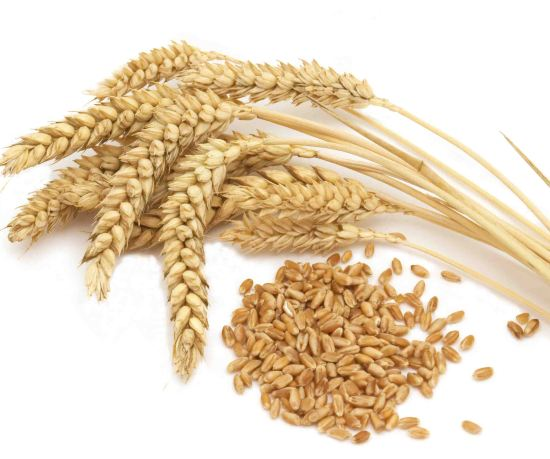 know about celiac disease